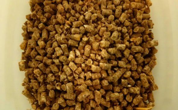 Pelletöityä broilerinrehua, joka sisältää jauhettua jauhopukin toukkaa