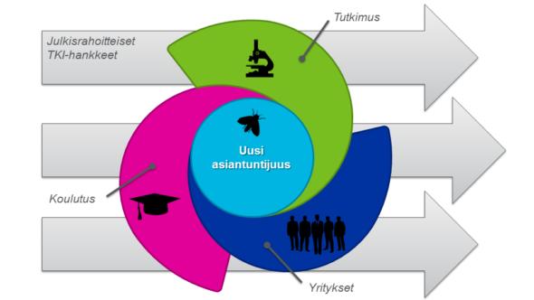 Värikäs kaavio