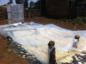 Drying maize under solar and wind tunnel. Photo: IFPRI